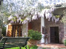 Foto 1 di Bed and Breakfast - Alle Mimose
